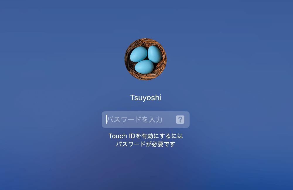 Mac Japanese setting 11