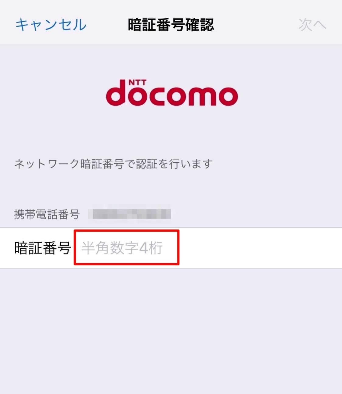 Docomo iPhone data 4
